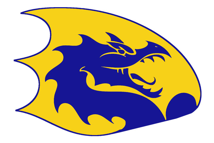 blue and gold Cameron High School logo