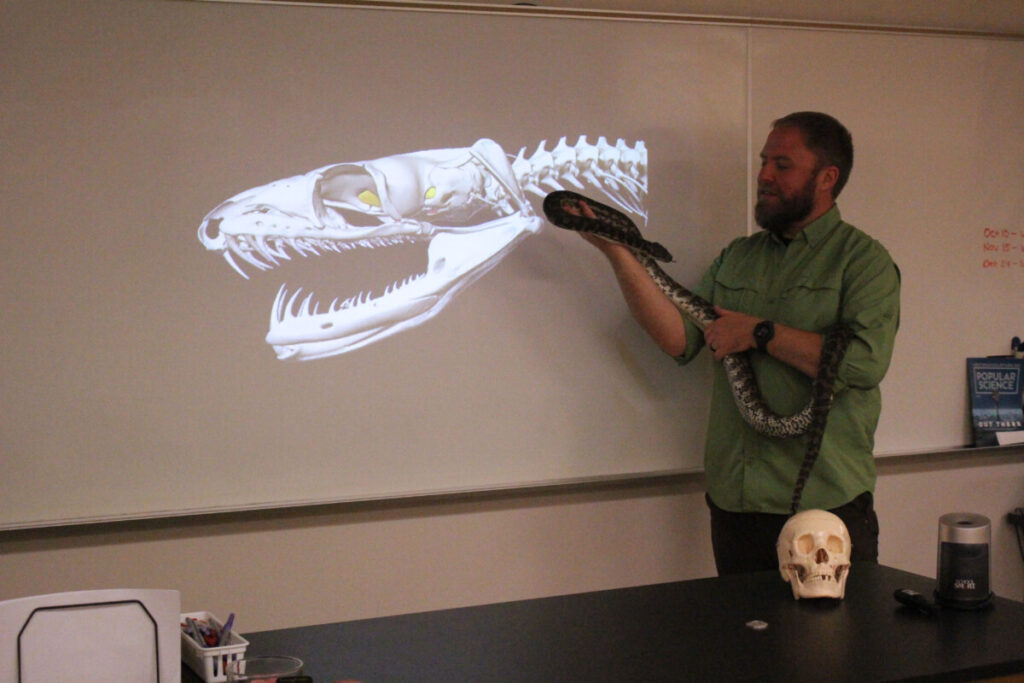 Zachary Loughman, a professor at WLU, shows students a python.